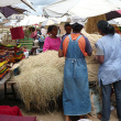 Selling raffia fibres on the Coum market  - Sale of fibres on the market